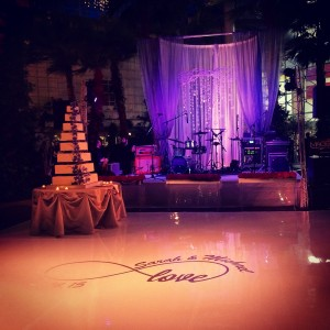 Crystal Gardens Wedding Liven It Up Events 2
