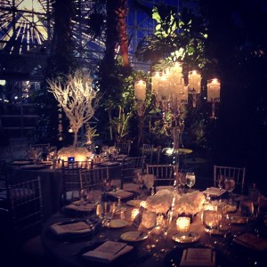 Crystal Gardens Wedding Liven It Up Events 3