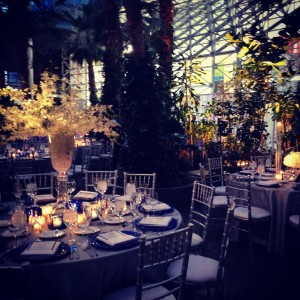 Crystal Gardens Wedding Liven It Up Events 5