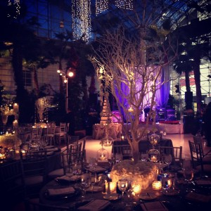 Crystal Gardens Wedding Liven It Up Events 9